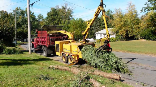 Picture of our dump trukc and wood chipper working to grind up debri from a tree that was cut down in Brockton, MA